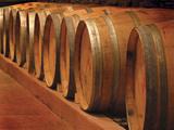 Winery III