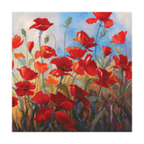 Poppies at Dusk II