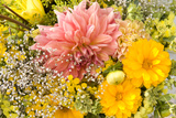 Summer Bouquet I