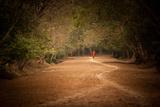 Monk on Path
