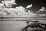 Yellowstone Creek and Clouds I