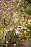 Vintage Bicycle IV