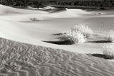 Death Valley Dunes II