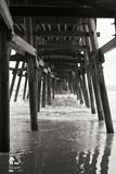 Pier Pilings 18