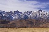 Mt Whitney Range II