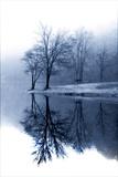 Fog on the Lake I