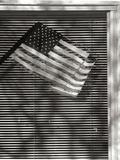 Window Flag II