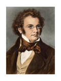 Portrait of Composer Franz Schubert