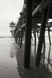 Pier Pilings 17