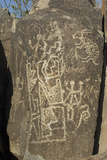Rabbit and Other Jornada-Mogollon Petroglyphs at Three Rivers Site  New Mexico