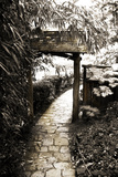 Bamboo Garden I