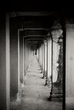 Angkor Wat Walkway II