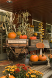 Autumn Harvest I