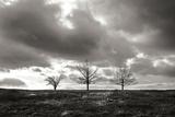 Winter Silence I