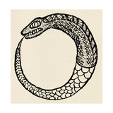 The Dragon Ouroboros  from La Magie Noire  France