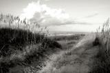 Dunes I BW