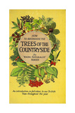 1950s UK Trees of the Countryside Book Cover