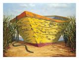 Yellow and Orange Rowboat