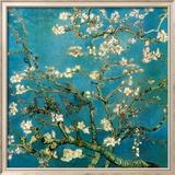 Branches d'amandier en fleurs, Saint-Rémy, 1890 Reproduction encadrée par Vincent Van Gogh