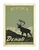Denali National Park II