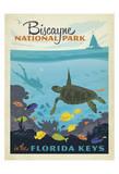 Biscayne National Park In The Florida Keys Reproduction d'art par Anderson Design Group