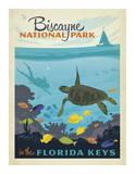 Biscayne National Park In The Florida Keys