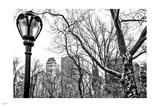 Central Park Winter III