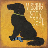 Missing Sock Department