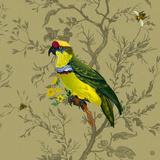 Pisticule Parrot