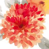 Peach Flower I