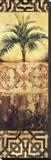 Palm Manuscripts I