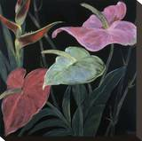 In Bloom II
