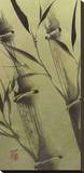 Bamboo's Peace