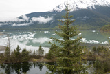 Ice Floes Near Mendenhall Glacier in Juneau  Alaska