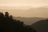 Silhouette of Trees and Mountains From Quatal Canyon Road