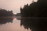 The Sunrise and Cypress Trees Are Reflected in Billy's Lake