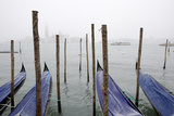 A Rare Snow Shower Powders Gondolas in Venice Near Piazza San Marco