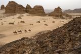 A Bedouin Riding a Camel Through the Sinai Desert