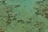 Snorkelers Enjoy the Water in Sharm El Sheikh