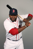 Fort Myers  FL - February 17: David Ortiz