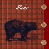 Flannel Bear