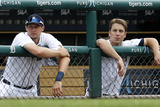 Detroit  MI - June 27: Don Kelly and Andy Dirks
