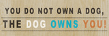 Dog Owns You I