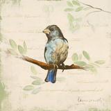Bird Scene II