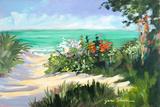 Sun Beach Dunes