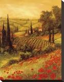 Toscano Valley II