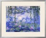 Water Lilies (Nymphéas)  c1916