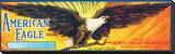 American Eagle Brand