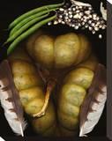 Squash Beans Corn indian Garden