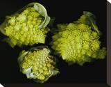 Romanesco Vegetable Fractal